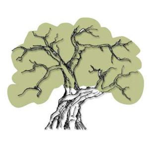 logo du site Le Comptoir de l'Olivier
